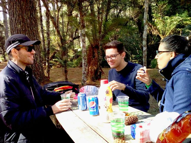 Enjoying Life Breakfast Good Friends Hortoflorestal Campos Do Jordão Serra Da Mantiqueira São Paulo, Brasil Faces Of EyeEm