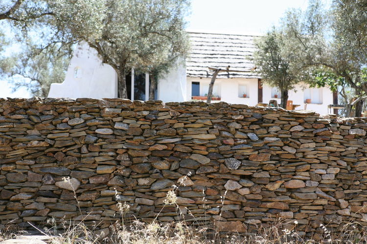 Stack of logs against stone wall