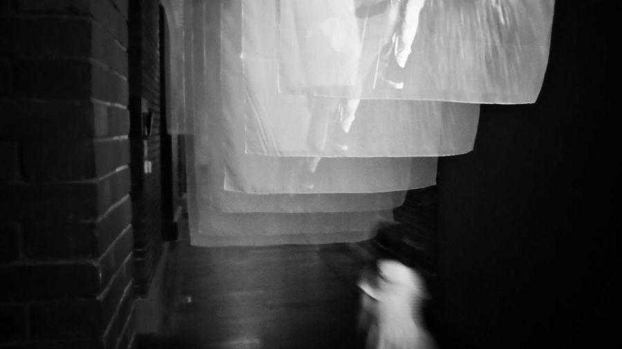2018/4/1 街拍獵影 於臺北當代藝術館---「晃│影-史帝夫 ‧ 麥柯里個展」 Museum Taiwan Bw_lover BW_photography B&w Photo B&w Bw Photography B&w Photography Bwphotography Street Streetphotography Street Photography Streetphoto_bw Street Scene Streetphotography_bw b&w street photography EyeEmNewHere
