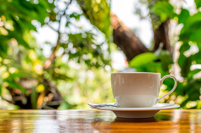 Close-up Coffee - Drink Coffee Cup Cup Day Drink Focus On Foreground Food And Drink Freshness Healthy Eating Nature No People Outdoors Refreshment Saucer Table Tree