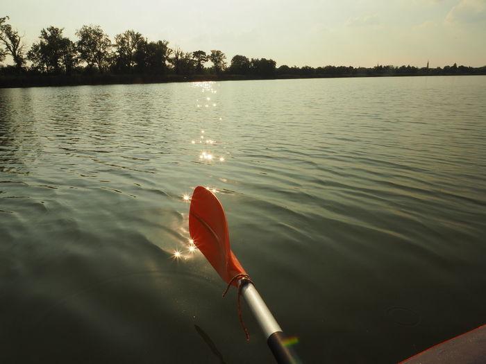 Fadd Magyarország Folyo River Riverside Holtág Deadriver Sport Sports Kajak Kayaking Napsütés Sunshine Tükröződés Reflection Evezés Paddle Landscapes With WhiteWall Lieblingsteil