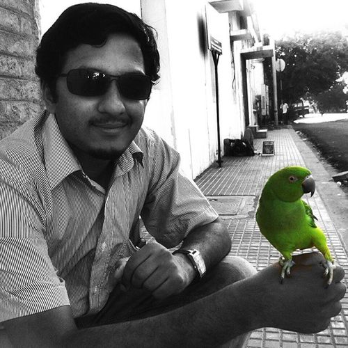 Parrot meenakshi... Parrot Birdsofinstagram Petlover Birds BlackandColor Indiaclicks _soi _oye Photographers_of_india Streetphotography Instadaily Rockybeach Pondicherry