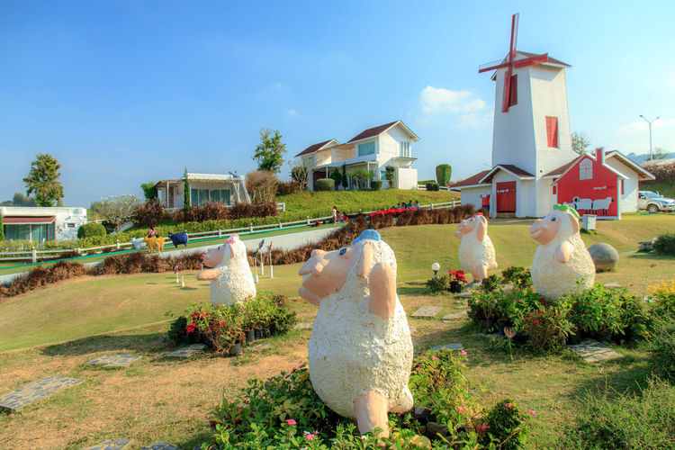 Sheep farm. Attractions Butterfly Attractions In Thailand Farm Nature Sky And Clouds Travel Wind Turbine Attractions Cup Landscape Sheep Farm Sheeps Sky