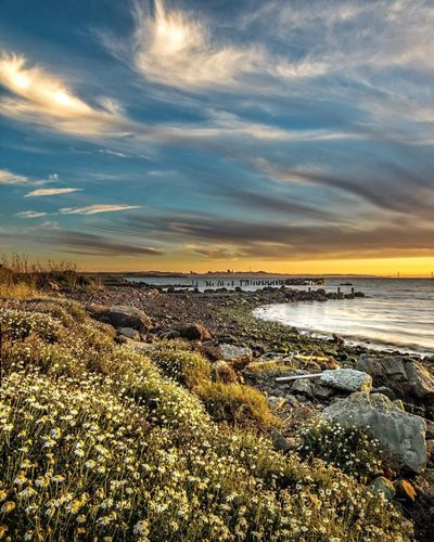 Water Sea Beach Tranquil Scene Scenics Horizon Over Water Shore Tranquility Sky Rock - Object Beauty In Nature Sunset Nature Cloud - Sky Vacations Non-urban Scene Coastline Rocky Surface Level Calm