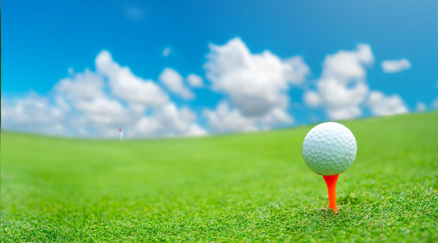Close up golf ball on green grass field. sport golf club Activity Background Ball Cart Challenge Close Up Club Competition Concept Course Day Equipment Exercise Fairway Field Fog Fun Game Golf Golfer Golfing Grass Green Hit Hobbies Hobby Hold Hole Holiday Landscape Lawn Lifestyle Light Meadow Morning Nature Object Outdoor Play Pursuit  Relax Shot Space Sport STAND Stick Strong Summer Sun Sunlight