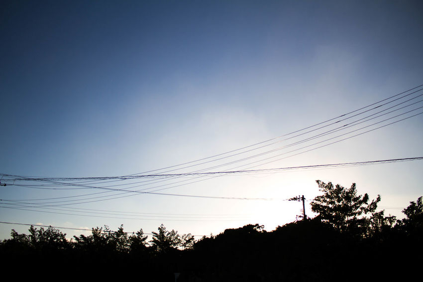 Blue Cable Connection Day Enjoying Life Evening EyeEm Best Shots EyeEm Nature Lover Hachijo-island Light And Shadow Low Angle View Nature Nature Nature Photography Nature_collection No People OpenEdit Outdoors Photography Power Supply Sky Sun Sunset Tree Canon7d