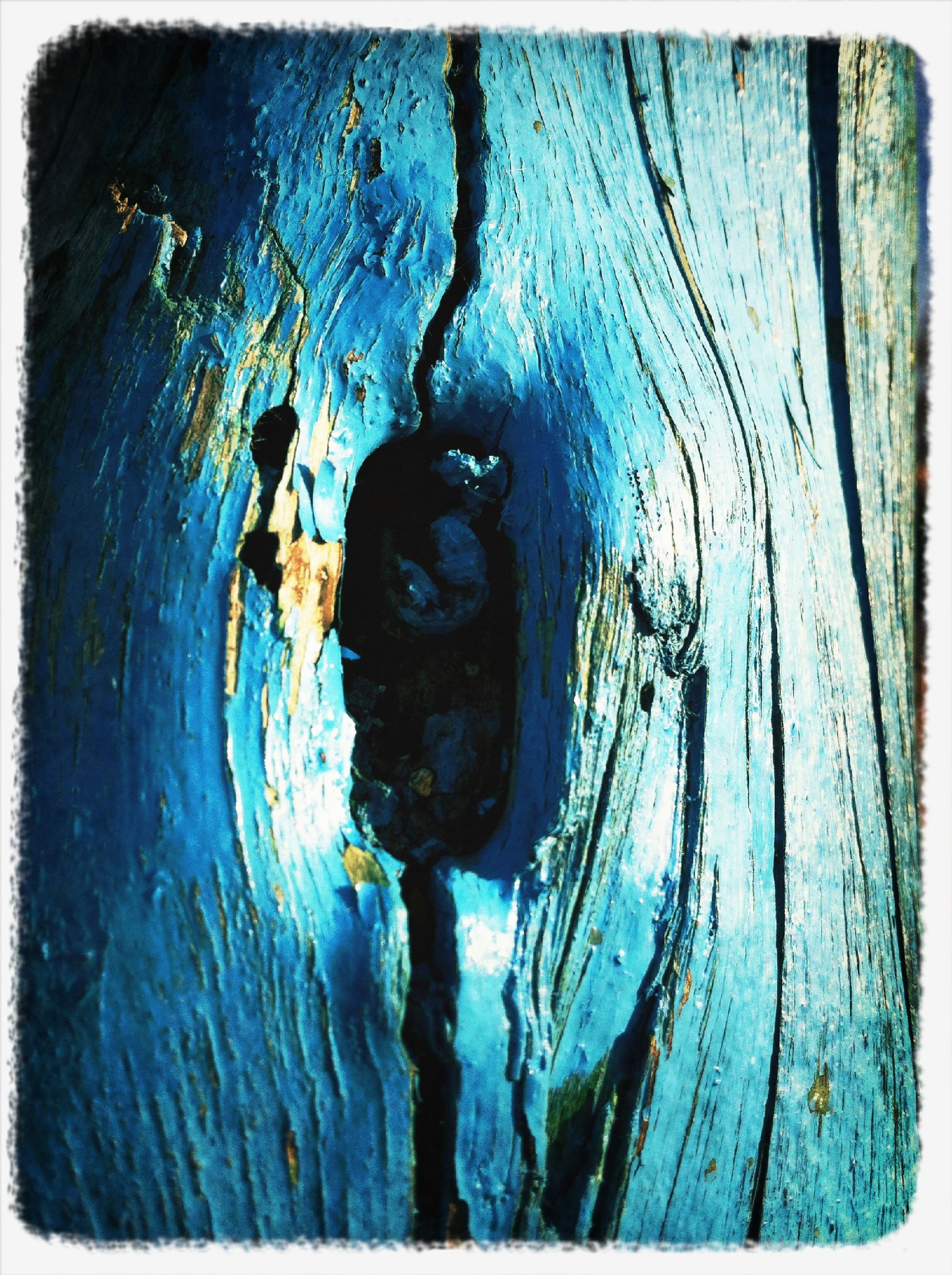 wood - material, transfer print, textured, close-up, auto post production filter, weathered, wooden, wood, full frame, plank, backgrounds, old, tree trunk, blue, outdoors, rusty, rough, no people, day, animal themes