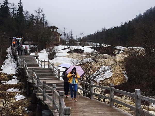 Ice Age Snow Snowing Ice Icy Trail Pathway Walkway People Walking Umbrellas Trees Plants Branches Rock Rock Formation Mountains Tranquil Scene Steps Togetherness Full Length Sichuan China Travel People And Places