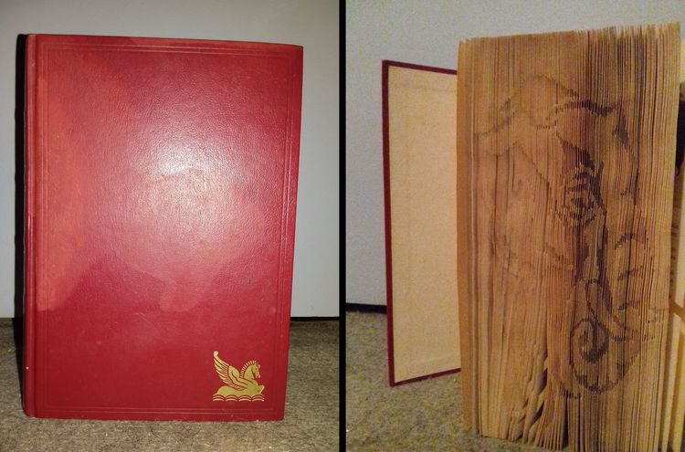 The beginning of a new project. Tell me if you like by comments or by mail :-). Red No People Creativity Elephant Paper Book Book Folding Art Culture Sculpture Indoors  Day Close-up