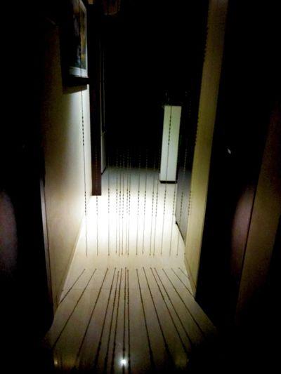 Shadow.. Door