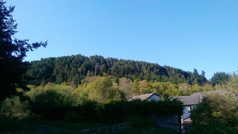 Scotland Scottish Highlands Scottish Scenery Landscape #Nature #photography Landscape_photography Nice Day Spring Has Arrived Forrest Photography Naturephotography Blue Sky Landscape