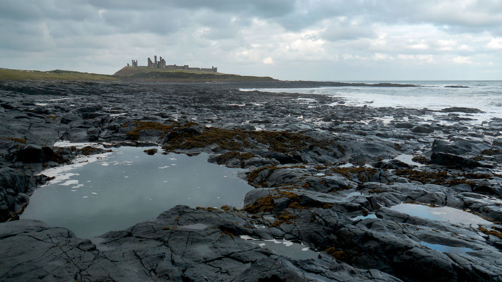Beach Day Dunstanburgh Castle Dunstanburghcastle Horizon Over Water Nature No People Outdoors Rock - Object Ruin Ruins Ruins Of A Castle Sea Sky Water