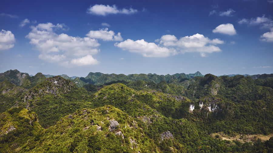 Halongbay Vietnam Beauty In Nature Catbaisland Cloud - Sky Day Environment Green Color Growth Idyllic Jungle Land Landscape Mountain Nature No People Non-urban Scene Outdoors Plant Scenics - Nature Sky Tranquil Scene Tranquility Tree