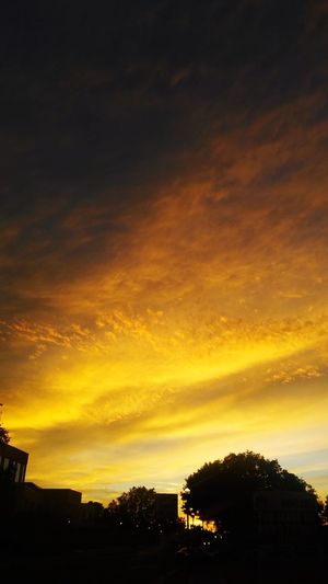 Sunset Silhouette Sky Tree No People Dramatic Sky Scenics Outdoors