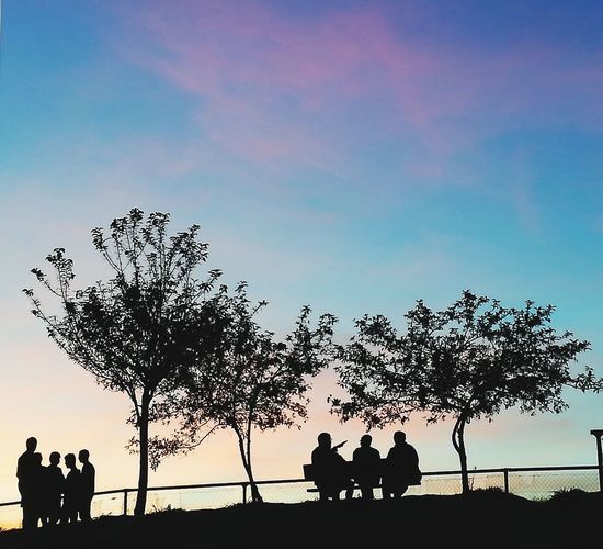 People. Sunset. Silhouettes