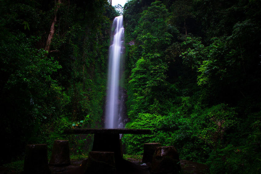 Putuk truno Green Gogreen SaveNature Landscape Landscapephotography Longexposures Putuktruno Putuktrunowaterfall Waterfall Green Color Tree Long Exposure Motion Night Outdoors No People Nature Beauty In Nature Scenics