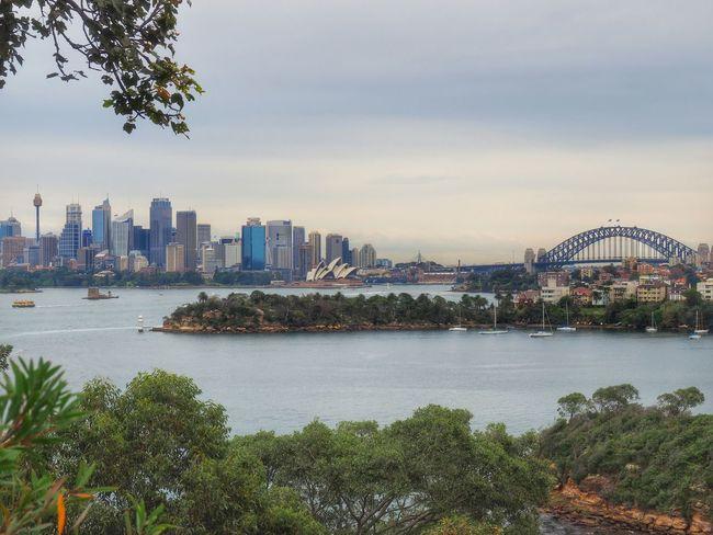 Cityscapes Operahouse Sydneyharbour Skyline Sydney