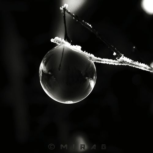 Nature Snow Hanging Close-up Reflection Drop No People First Eyeem Photo