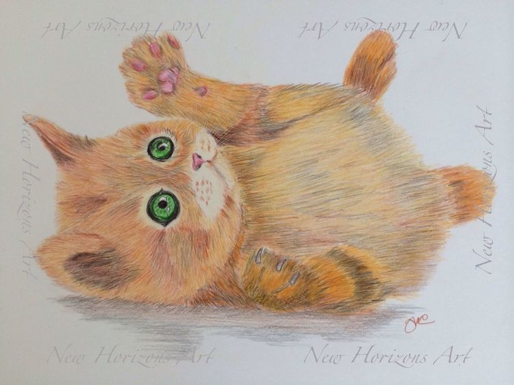 Kitten in coloured pencils Art Cat Drawing Art #illustration #drawing #draw #tagsforlikes #picture #photography #artist #sketch #sketchbook #paper #pen #pencil #artsy #in
