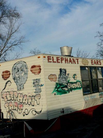 Elephant Ears Shady Spray Paint