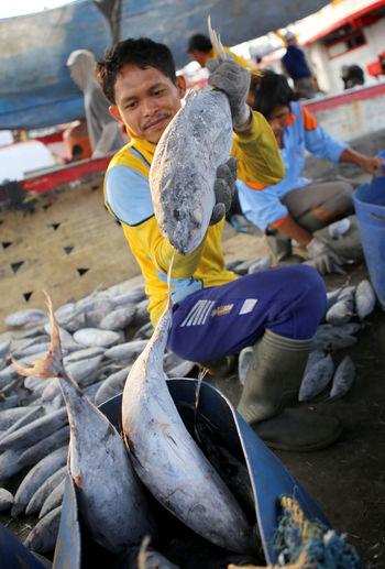 Indonesian marine fish catches Fishing Industry Industry Fish Huntingseason Photojoutnalist Photojournalism Economic Sea Food
