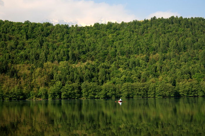 Beauty In Nature Forest Green Lake Reflection Relaxing Moments Scenics Tranquil Scene Tree Water