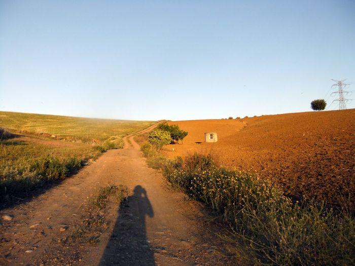 Shadow of man walking on road
