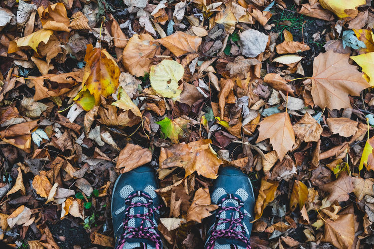 Walking into autumn.. Leaf Plant Part Autumn Leaves Unrecognizable Person Human Body Part Nature Standing One Person Personal Perspective Natural Condition Outdoors Seasons Shoes Adventure Calmness Beauty In Nature EyeEm Nature Lover EyeEm Gallery EyeEm Gallery Nature_collection