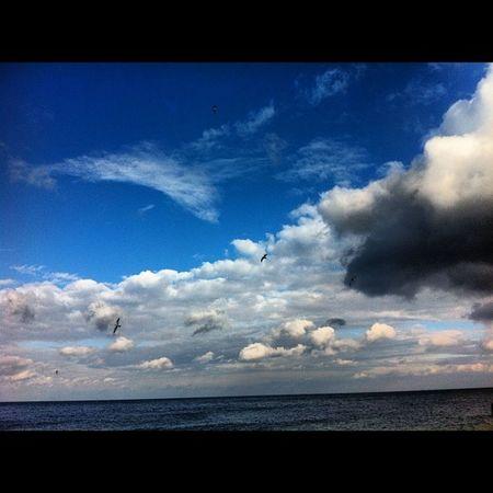 Beach Sand Water Sea waves wave ocean summer sun sunny seaside blue yellow view nature TAGSTAGRAM .COM instabeach beautiful instasummer beauty horizon love coast sky cloud tagsta tagsta_nature tagstagramers @tagstagram clouds birds