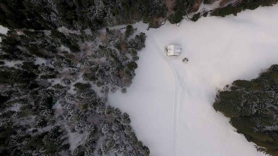 Drone  Beauty