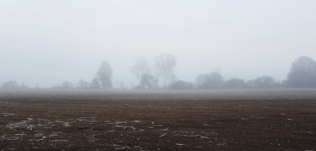Fog Tranquil Scene Beauty In Nature Environment Scenics - Nature Landscape Cold Temperature Outdoors Land Field