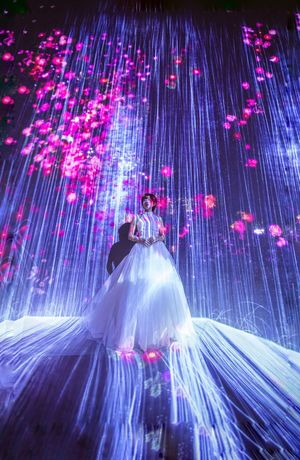 Teamlab borderless Traveler Travelphotography Travel Destinations White Dress Wedding Dress Light チームラボ 展覧会 Long Exposure Illuminated Technology Nature Outdoors First Eyeem Photo