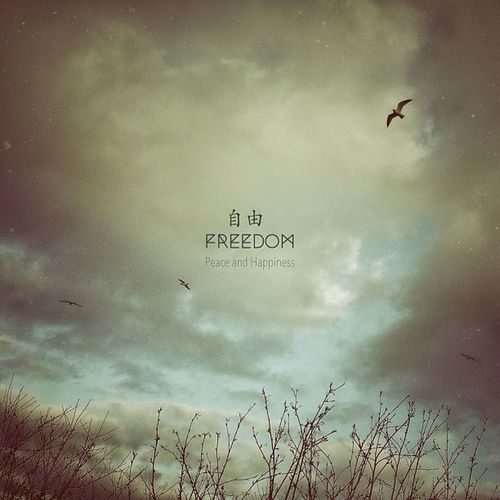 Freedom Igers IGDaily Clouds Designattack Nature Jj  Sky Instagramers Bird Instagood Tree Instagramhub Snow Instadaily Fly Jj_forum Iphoneonly Ictypography Photooftheday Freedom_ic Iphonesia Jj_forum_0542 Picoftheday Iccountryliving All_shots Instamood Bestoftheday