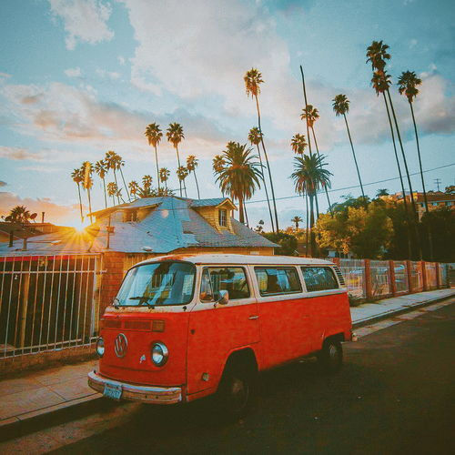 Beach life that's good shot in my opinion!!! palm tree car beachphotography 📸debodoes on Instagram!!First Eyeem Photo Debodoes Beachlife Beachphotography Summer ☀