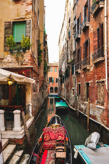 Architecture Bridge Building Exterior Canal Canale Grande Canals And Waterways Carnival City Cultures Gondola Gondola - Traditional Boat Gondole In Venice Gondolier Green Water Italy Rialto Rialto Bridge San Marco San Marco Square Venezia Venice Venice Canals Venice Carnival Venice, Italy Waterway