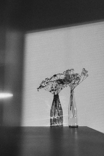 Illuminated vase on table against wall