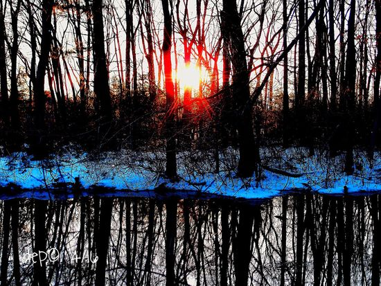 Over the water and through the woods - sunburst over the spring snow Taking Photos Sunset Tree And Sky Treescape Nature Photography Olympus XZ-1 Camerateur Massachusetts Spring 2016 Water Reflections First Eyeem Photo
