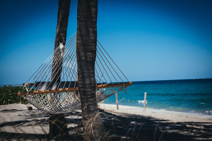 Lazy Afternoon Ocean View Sunlight Beach Beauty In Nature Blue Clear Sky Day Florida Fujifilm_xseries Hammock Horizon Over Water Nature No People Outdoors Palm Trees Photographyisthemuse Relaxation Sea Sky Water Xpro2