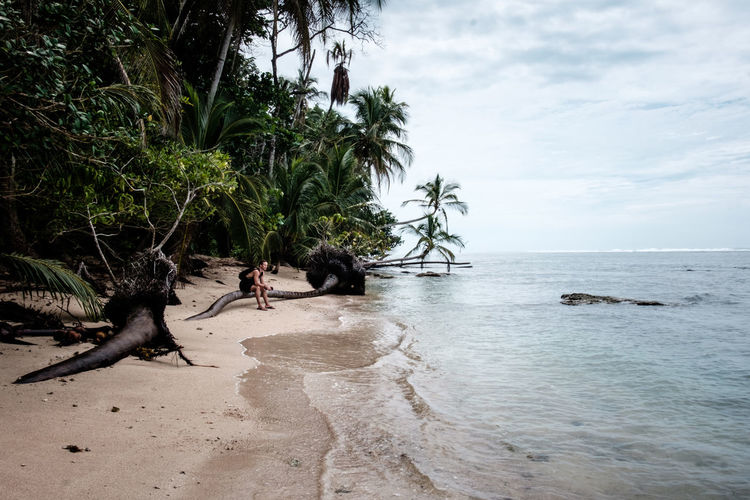 Beach Beauty In Nature Calm Central America Coastline Costa Rica Day Growth Horizon Over Water Man Nature Ocean Outdoors Palm Tree Sand Scenics Sea Shore Sky Tourism Tranquil Scene Tranquility Tree Vacations Water