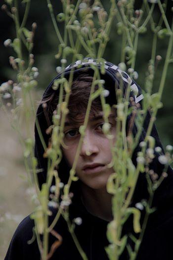 Portrait of teenage boy looking through plants