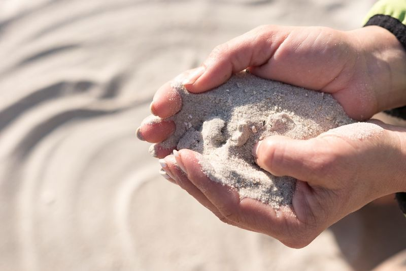 Neuharlingersiel, North Germany Human Hand Sand Human Body Part Beach Real People One Person Holding Close-up Woman Lifestyles Day Outdoors People Female Hand
