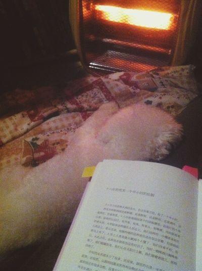 最近读书的状态好的不得了,仿佛回到十八岁。