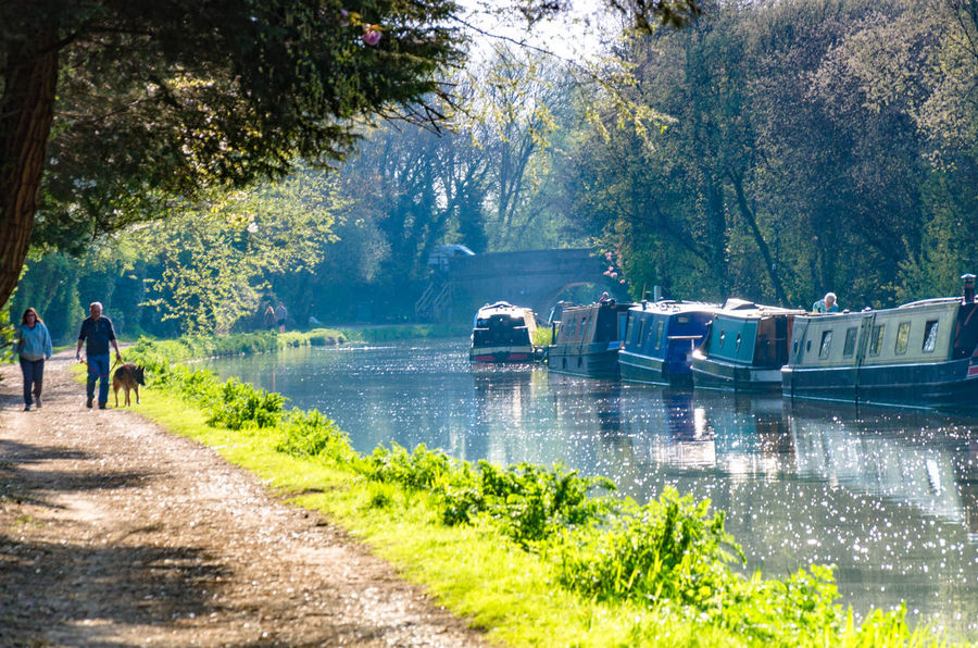 A sunny evening in April on the banks of The River Kennet in Reading, Berkshire, UK. Beauty In Nature Canal Day Green Narrowboat Narrowboats Nature Outdoors Outdoors❤ Outside Path People River River Kennet Sunny Tree Two People Water Waterway