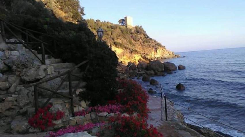 Beach View Beachscape Beach Seascape Photography Seaview Sea Side Sea Naturephotography Nature Flowers Flowerbeds Ladder Staircase Landscape Rock Rockseaside Sky Cliffside