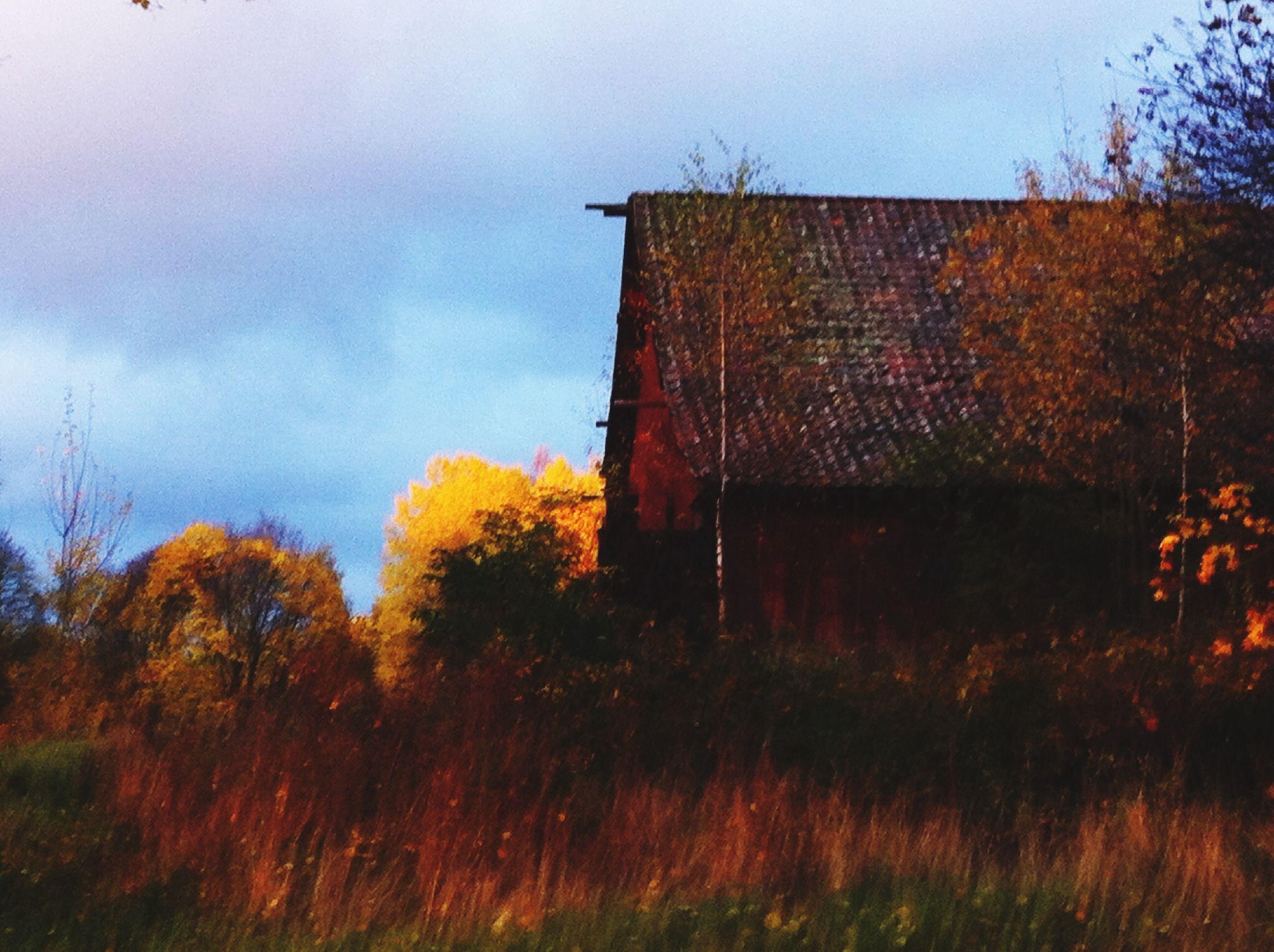 Landscape Countryside Colors Of Autumn Architecture