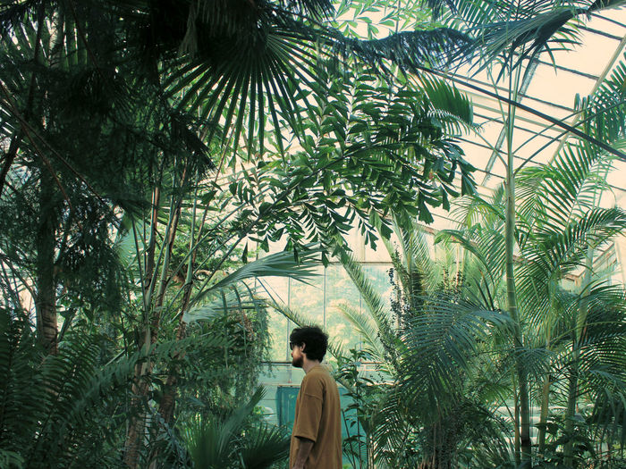 Side view of man standing in greenhouse