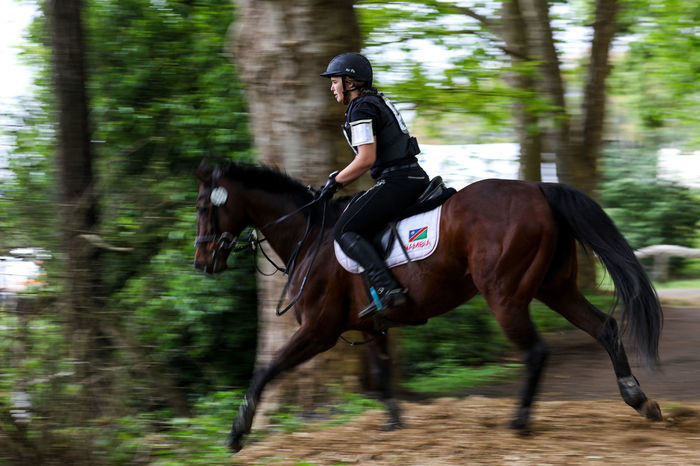 Cross country eventing Cross Country Cross Country Eventing Domestic Animals Event Horse Riding Leisure Activity Mammal Motion Motion Blur Namibia On The Move One Animal Panning Rider Riding Sport WoodLand capturing motion