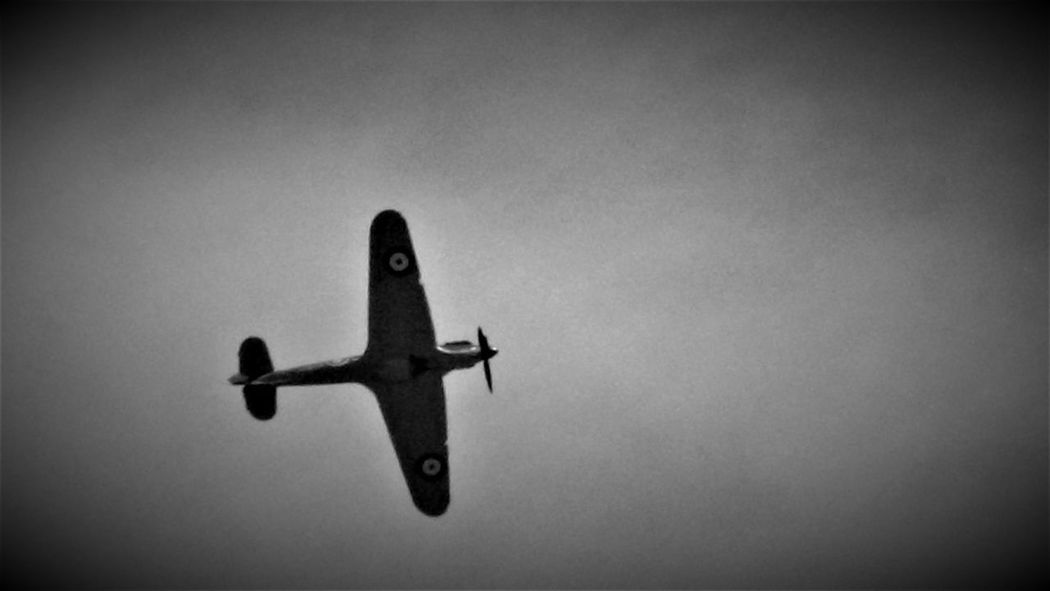 Here is a (Black and White) Photo Shot of a Hurricane Aircraft flying over Capel Le Ferne. This Photo was taken in July 2017 In Capel le Ferne - Folkestone - United Kingdom. 2017 2017 Year Black & White Capel Le Ferne England, UK Folkestone Kent England Great Britain Planespotting Travel Photography United Kingdom Aircraft Black And White Black And White Collection  Black And White Photography Black&white Black&white Photography Blackandwhite Blackandwhite Photography Blackandwhitephotography Kent England Outdoors Travel And Tourism Travel Destination Travel Destinations Travelphotography