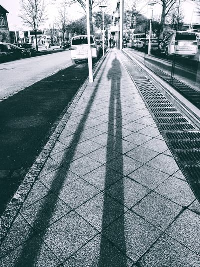 Shadows Shadows & Lights Sunlight Streetphotography monochrome photography Black And White Best EyeEm Shot EyeEm Best Shots EyeEm Best Shots Eye4photography  Sunny Snow City Shadow Tree Cold Temperature Sky