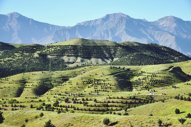 Scenic view of agricultural field against mountain range